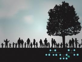 Seeing differently is talking differently - Studiedag relatie- en gezinstherapie UPC KU Leuven op 22 juni 2020